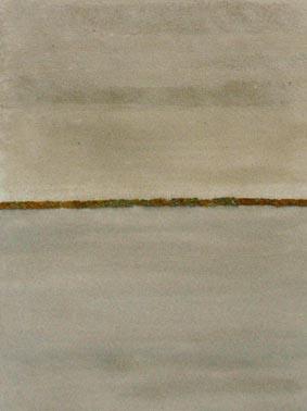 Poudres de mer #5 Silice concassée, lichen caloplaca marina, flustre